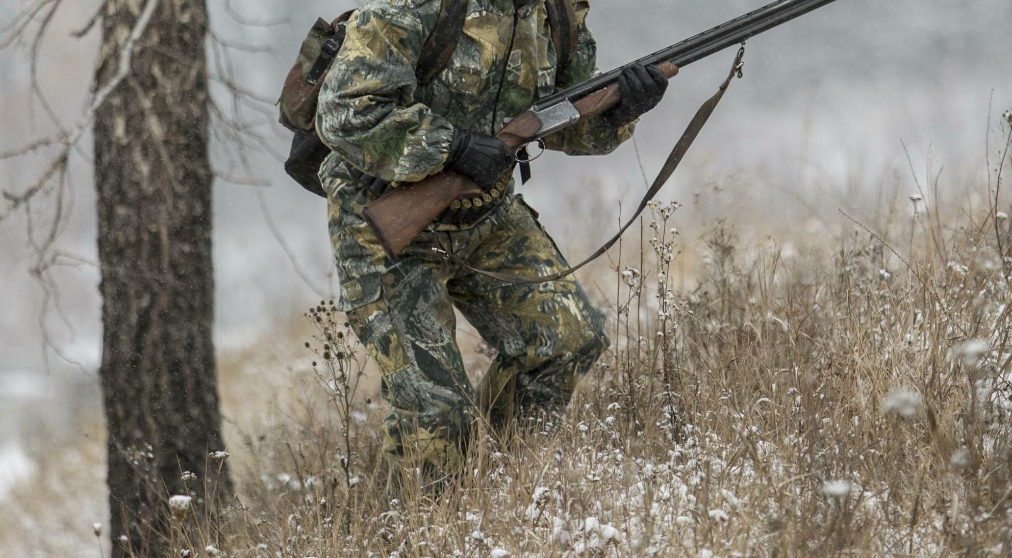 За 2-х убитых фазанов гражданин Волгоградской области заплатит 6 тыс. руб.