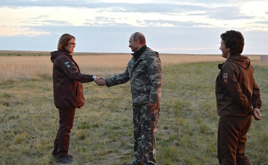Взаповедник Российской Федерации выпустили первых лошадей Пржевальского