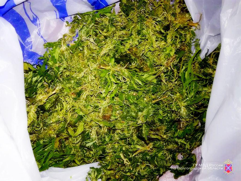Москве в достать марихуану марихуану куплю