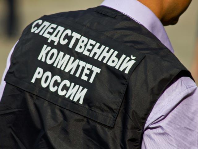 Поделу оДТП вМарий Элзадержаны шофёр иарендатор лесовоза