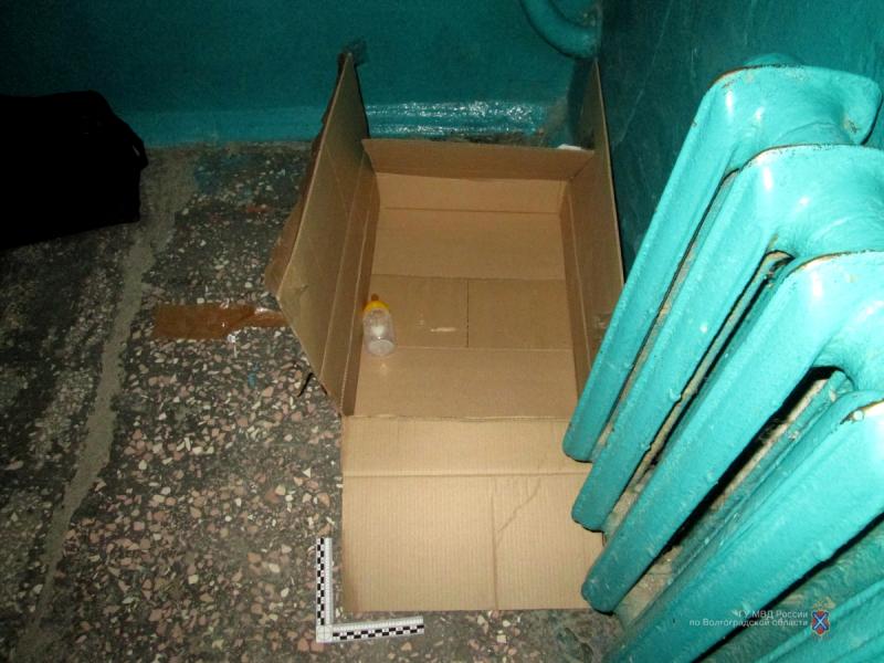 ВВолгоградской области отыскали мать брошенного вподъезде грудничка