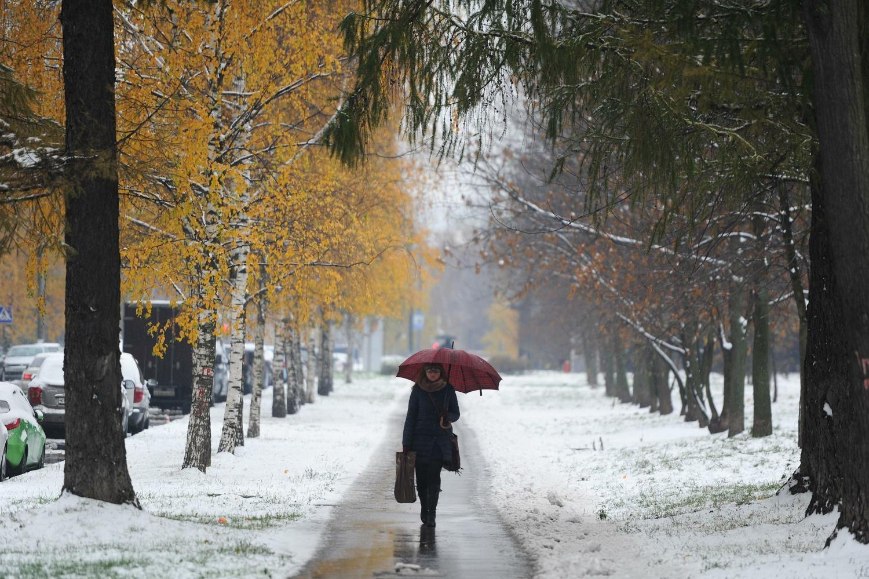 ВВолгоградской области предполагается снег изаморозки до-10ºС