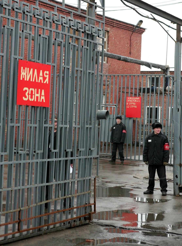 Трое молодых людей задержаны закражу еды исигарет вВолгоградской области