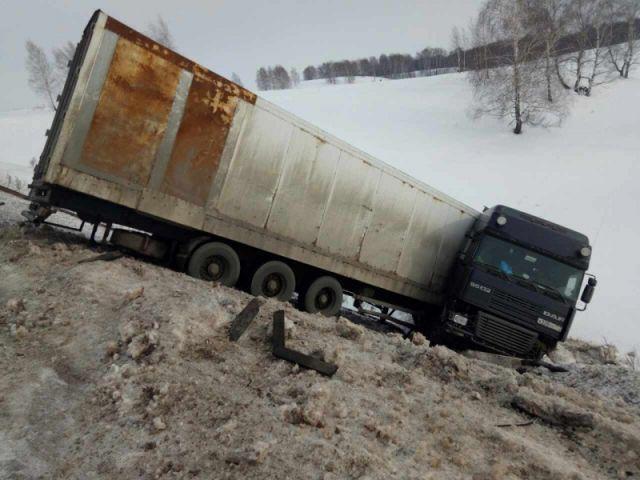 Попавшие вДТП под Оренбургом цирковые тигры продолжили путь вУфу
