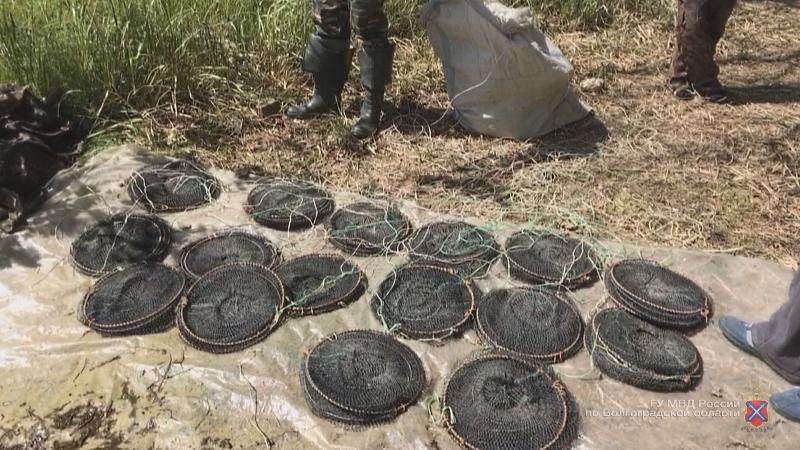 В Ленинском районе у браконьеров изъяли 1 км запрещенных сетей
