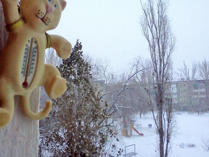 ВВолгоградской области ударят морозы: предполагается до-5˚С