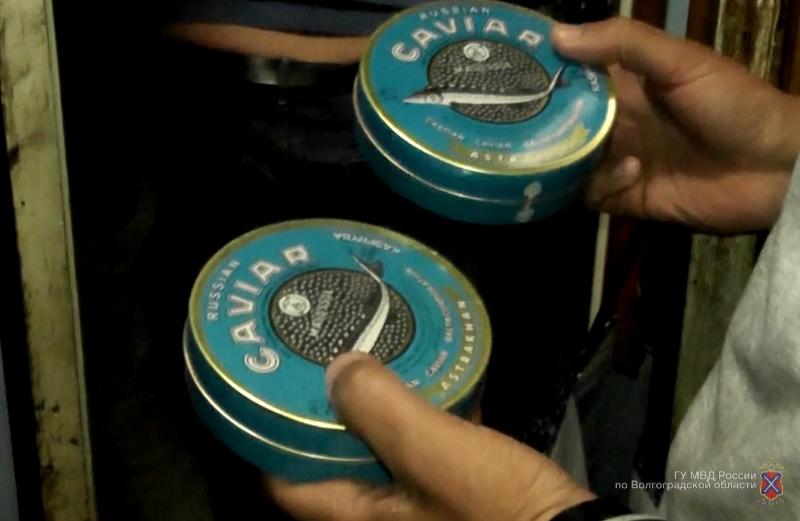 Волгоградские оперативники задержали астраханца за реализацию осетров ичерной икры
