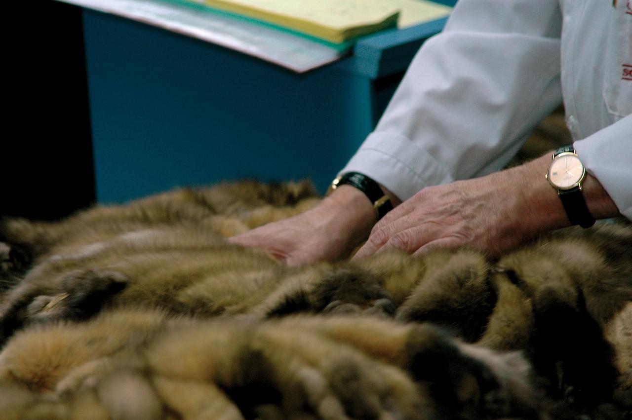 В Михайловке оштрафовали индивидуального предпринимателя за отсутствие маркировки на меховом товаре