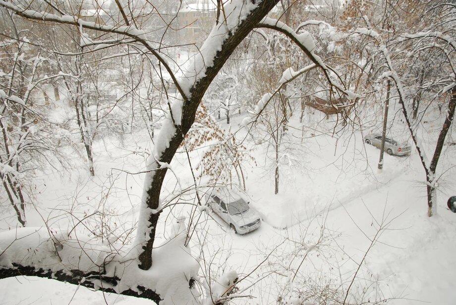 Синоптики опубликовали прогноз погоды в Волгоградской области на конец января