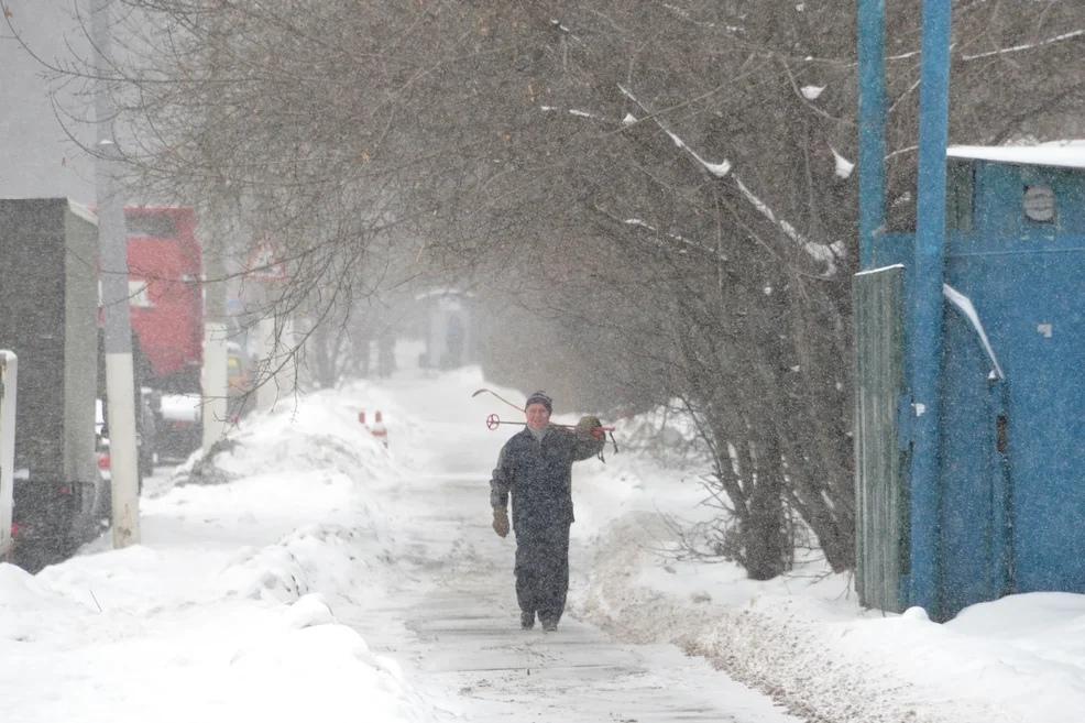 Жителей Волгограда и области предупредили о сильном ветре