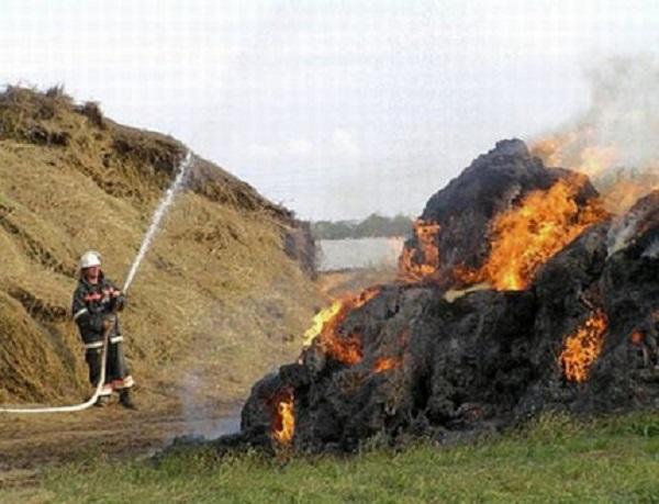 Сено горит