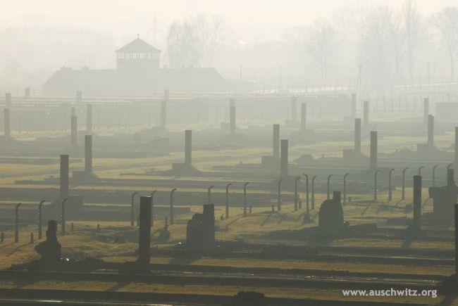 Умерла жертва «Ангела смерти» - 85-летняя узница Освенцим Ева Мозес Кор