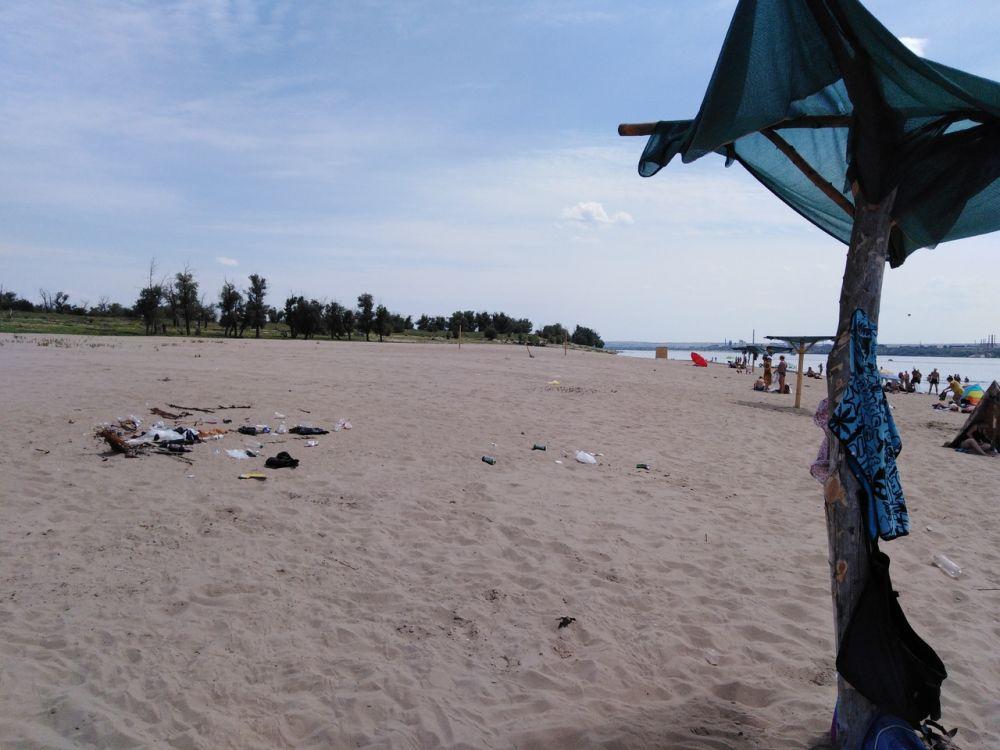 «Антибобры»: пляж на острове Сарпинский предстал перед журналистами во всей красе