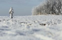Под Волгоградом заблудившегося в лесу охотника отыскал полицейский