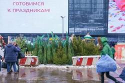 Низкие зарплаты и экономика: россияне подвели итоги 2016 года