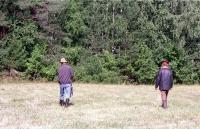 Пожилая пара грибников заблудилась в Волгоградской области