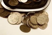 Волгоградские депутаты не стали поднимать прожиточный минимум пенсионерам в 2018