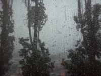 В Волгограде на выходные ожидаются кратковременные дожди и град
