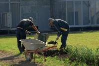 Волгоградец пытался за взятку освободить от суда троих узбеков и попал в суд сам