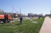 Торжественное открытие Аллеи России пройдет 9 мая