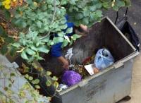 В дачном массиве под Волгоградом нашли мужские расчлененные останки