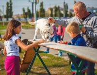В Волгограде для любителей собак состоится «Лохматая уборка»