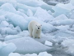 В Арктике начались испытания новой российской военной техники