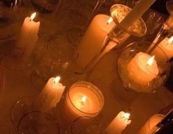Волгоград присоединятся к экологической акции «Час Земли»
