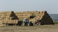 Под Волгоградом сгорело 30 тонн сена