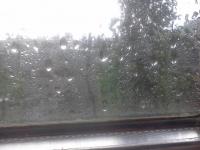 В Волгограде дожди и грозы продлятся до конца недели
