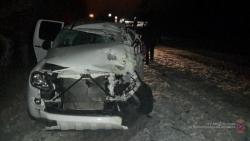 Под Волгоградом водитель уснул и врезался в дерево