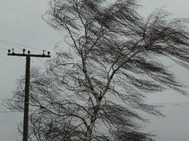 Ветер предупреждение