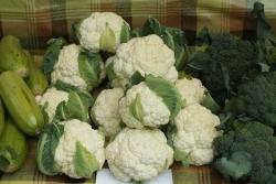 В России сняли запрет на импорт части турецких овощей