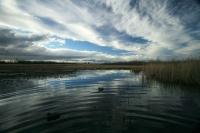 Усохло: в ФСБ рассказали, почему озеро Сладкое теперь в Казахстане