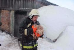 Пожарные тушили огонь в свинарнике