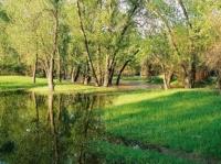 Волга-Ахтубинская пойма