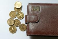 В Москве болельщик из Швеции лишился кошелька и 30 тысяч рублей