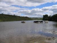 Названы непригодные места для купания в Волгоградской области