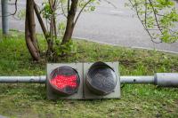 Представитель ОНФ высказался против ограничения красного света для пешеходов