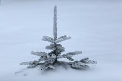 Снежная лавина сошла на отель в Италии, погибли 30 человек