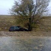 В Волгоградской области перевернулась «Нива»: один погибший, трое в больнице
