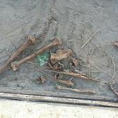 На севере Волгограда возле школы нашли останки человека